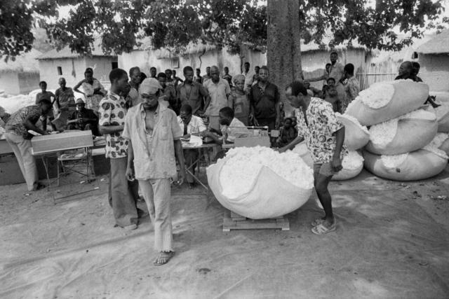 014 La pesa del cotone, Costa d'Avorio, 1978