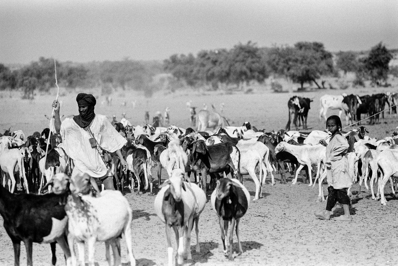 032 Pastori, Alto Volta, odierno Burkina Faso, 1978
