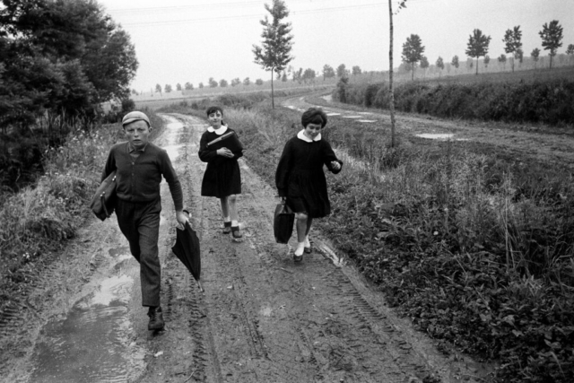 SCUOLA - 7 – Andando a scuola nella pianura emiliana, Reggio Emilia, 1964