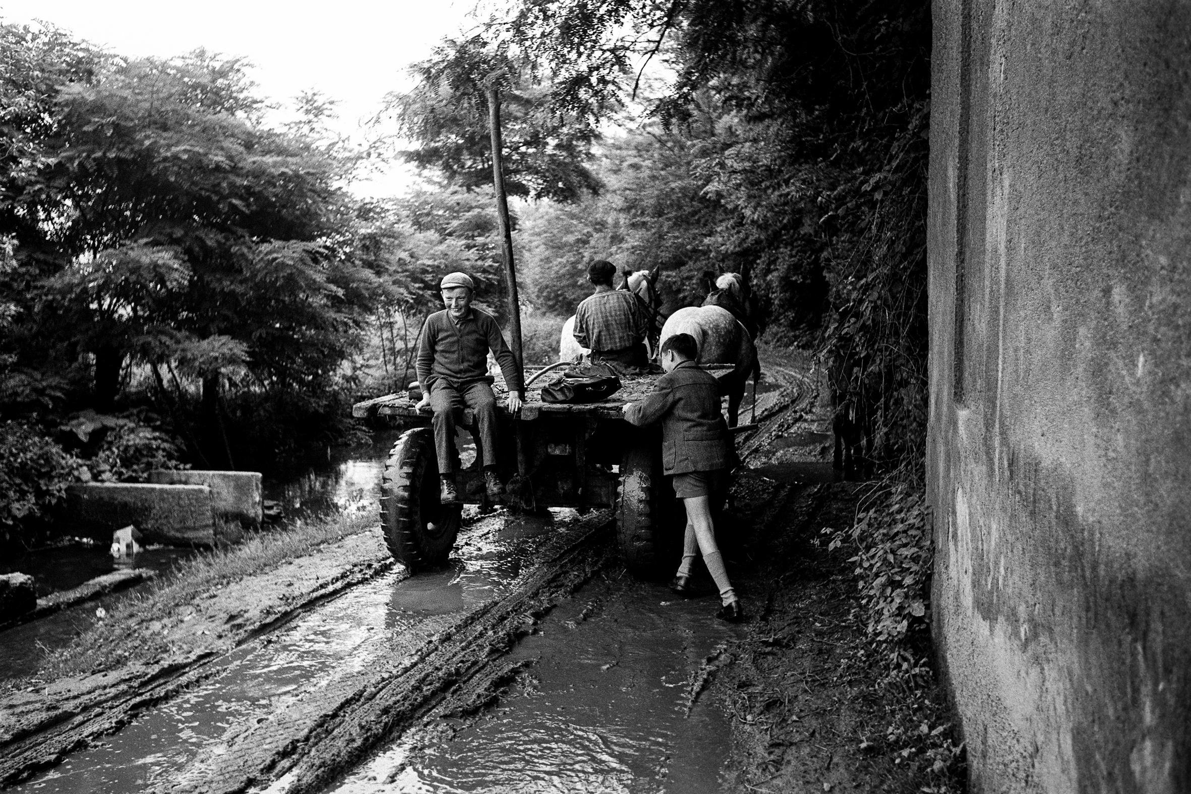 SCUOLA - 8 – Andando a scuola nella pianura emiliana, Reggio Emilia, 1964
